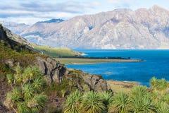 Härlig blå sjö Hawea royaltyfria bilder