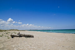 Härlig Black Sea strand, Shabla, Bulgarien Fotografering för Bildbyråer