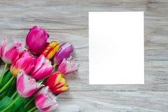 Härlig blom- bakgrunds… bakgrund med färgrika blommor Bukett av härliga tulpan på en träbakgrund Arkivbild