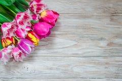 Härlig blom- bakgrunds… bakgrund med färgrika blommor Bukett av härliga tulpan på en träbakgrund Royaltyfri Bild