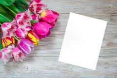 Härlig blom- bakgrunds… bakgrund med färgrika blommor Bukett av tulpan på en träbakgrund Fotografering för Bildbyråer