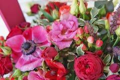 Härlig blom- ordning av röda, rosa och burgundy blommor i en rosa träask arkivbilder