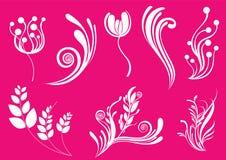 härlig blom- rosa soft för abstrakt bakgrund Royaltyfria Foton