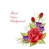 Härlig blom- sammansättning på vit royaltyfri illustrationer