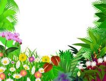 härlig blomma för bakgrund Arkivfoto