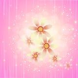 härlig blomma för bakgrund Arkivbilder