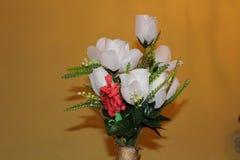 Härlig blomma för inomhus hem- garnering Royaltyfri Fotografi
