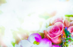 Härlig blommabakgrund/tapet som göras med färgfilter Royaltyfria Foton