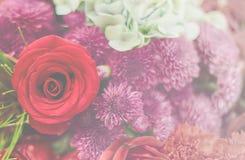 Härlig blommabakgrund/tapet som göras med färgfilter Fotografering för Bildbyråer