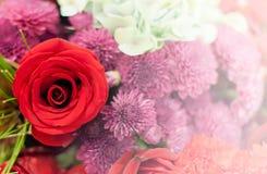 Härlig blommabakgrund/tapet som göras med färgfilter Arkivbilder