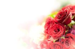 Härlig blommabakgrund/tapet som göras med färgfilter Royaltyfria Bilder