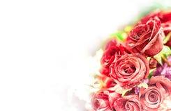 Härlig blommabakgrund/tapet som göras med färgfilter Arkivbild