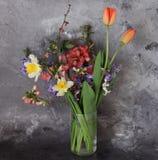 härlig blommafjäder Royaltyfri Foto