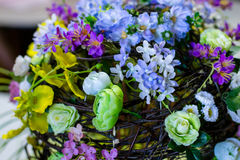 härlig blommafjäder Arkivfoton