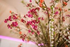 Härlig blommasammansättning av mycket små och gulliga små blommor Arkivbilder