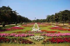 Härlig blommautställning Lahore 2016 Arkivbild