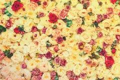 Härlig blommaväggbakgrund som tonas, closeup tonat arkivfoto
