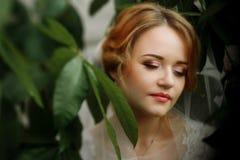 Härlig blond brudstående, closeup av den ursnygga nygifta personen wo arkivfoton