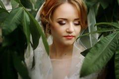 Härlig blond brudstående, closeup av den ursnygga nygifta personen wo royaltyfri bild