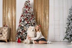 Härlig blond flicka som poserar med den vita hunden arkivfoto
