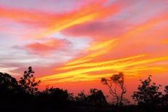 härlig brännhet solnedgång Arkivbild