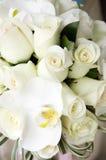 Härlig bröllopbukett av rosor och orkidér Royaltyfria Foton