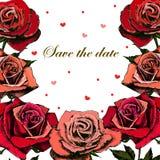 Härlig bröllopinbjudan med rosor Arkivbilder