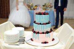 Härlig bröllopstårta med frukter royaltyfria bilder