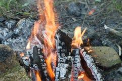 Härlig brinnande brasa i lägret, Arkivfoton