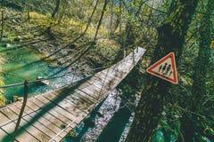 Härlig bro för höstskogträd över floden med tecknet fotografering för bildbyråer
