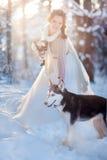Härlig brud i vinterskog royaltyfri fotografi