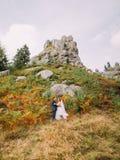Härlig brud med den stiliga brudgummen som omfamnar på bakgrund av steniga Carpathian berg Arkivbilder