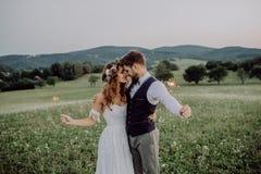 Härlig brud och brudgum på solnedgången i grön natur royaltyfria foton