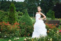 härlig brudklänningwhite Arkivfoton