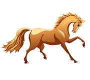 Härlig brun häst stock illustrationer