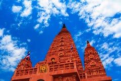 Härlig brun pagod Royaltyfri Fotografi