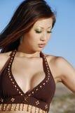 härlig brunett Royaltyfria Bilder