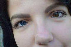 Härlig brunett med olik ögonfärgheterochromia royaltyfri fotografi