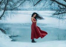 Härlig brunettflicka Fotografering för Bildbyråer