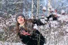 Härlig brunettkvinna i ett basker- och pälslag som poserar och ler på bakgrunden av den snöig skogen Royaltyfria Bilder