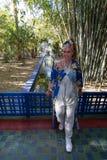 Härlig brunettkvinnastående med en mycket färgrik etnisk klänning i en trädgård royaltyfria foton