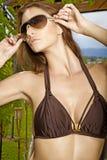härlig brunettstående royaltyfri bild