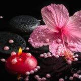 Härlig brunnsortinställning av den delikata rosa hibiskusen, zenstenar Arkivfoton
