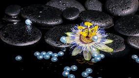Härlig brunnsortinställning av passiflorablomman, zenstenar med droppe Arkivfoton
