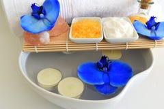 Härlig brunnsortinställning med blomman för blå orkidé Royaltyfria Bilder