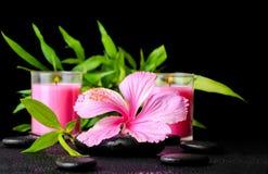 Härlig brunnsortstilleben av den rosa hibiskusblomman, fattar bambu Arkivbild