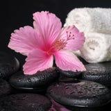 Härlig brunnsortstilleben av den rosa hibiskusen, droppar och handdukar på z Royaltyfri Foto