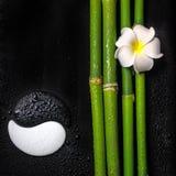 Härlig brunnsortstilleben av symbolet Yin Yang, frangipaniblomma a Fotografering för Bildbyråer