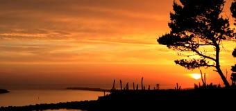 härlig bryggaoregon solnedgång Arkivbilder
