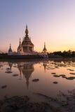 Härlig buddistisk pagod Royaltyfri Foto